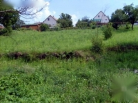 Szőlő utca 33 MFt - 0 m2Eladó lakóövezeti telek Dunabogdány