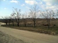 Dunakeszihez közel eső részen 25 MFt - 104 m2Eladó családi ház Fót